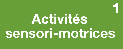activitessensorimotrices1